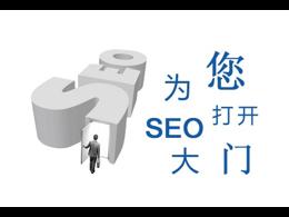 网站SEO优化经典案例